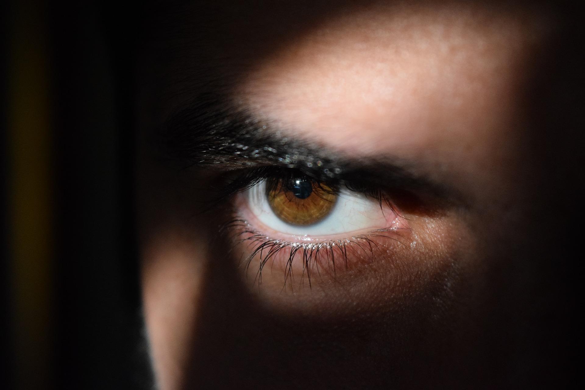 stalking FEDS-Recherchebureau